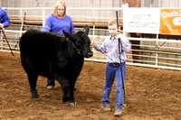 2016 Woods County Livestock Show